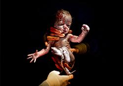 Nový trend v oblasti porodu – Focení novorozených miminek!